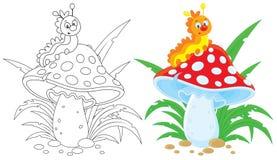毛虫和蛤蟆菌 库存图片