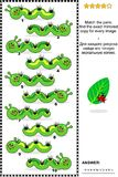 毛虫图片难题-察觉镜象 免版税图库摄影
