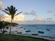 毛里求斯海岛海景  库存照片