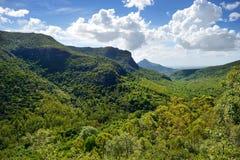 毛里求斯海岛热带密林 免版税图库摄影