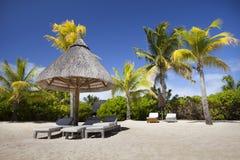 毛里求斯海滩 库存照片