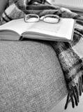 毯子、镜片和书秋天场面 免版税库存图片