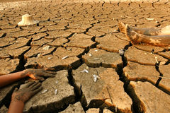 气候变化地球温暖 免版税库存图片