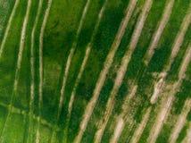 气候变化问题,天旱在农田里,空中 库存照片