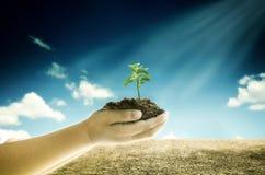 气候变化,全球性变暖和能承受的概念 免版税图库摄影