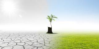 气候改变 免版税库存照片