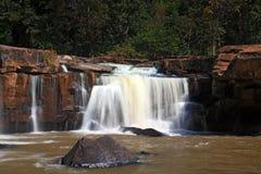 气候森林tadtone瀑布 库存图片