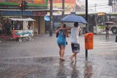 气候:夏天雨在里约热内卢 免版税图库摄影