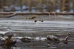 气泡在冰和水中 免版税库存图片