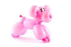 气球猪 免版税库存照片