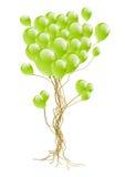 气球结构树 免版税库存图片