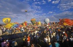 气球采取对空气在亚伯科基国际气球节日在新墨西哥 免版税库存图片