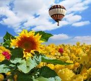 气球飞行在集居区领域 库存图片