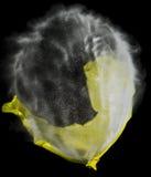 气球破裂 免版税图库摄影