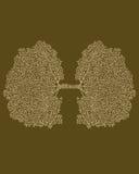 氧气 免版税库存图片