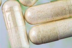 氨基葡萄糖胶囊,食物补充药片,顶视图,宏观图象 图库摄影
