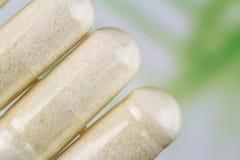 氨基葡萄糖胶囊,食物补充药片,顶视图,宏观图象 库存照片