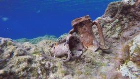 水下古希腊Amphorae的遗物 图库摄影