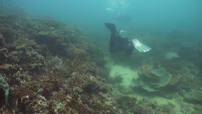 水下潜水员的水肺 菲律宾,民都洛 影视素材