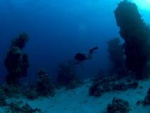 水下潜水员红色水肺的海运 免版税库存照片