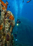 水下的世界 免版税库存照片
