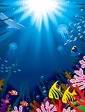 水下的世界 库存图片