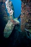 水下的推进器 免版税库存照片