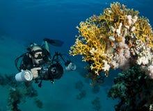 水下的摄影师 免版税库存图片
