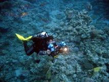 水下的摄影师 免版税库存照片