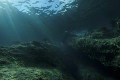 水下的横向 免版税库存照片