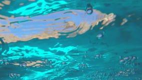 水下的水潮流 股票录像