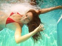 水下的游泳 库存照片