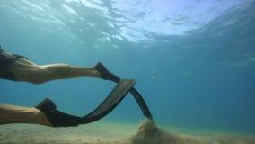 水下的潜水者看海底 股票视频