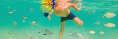 水下的自然课,潜航在清楚的蓝色海横幅,长的格式的男孩 库存图片