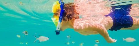 水下的自然课,潜航在清楚的蓝色海横幅,长的格式的男孩 免版税库存照片