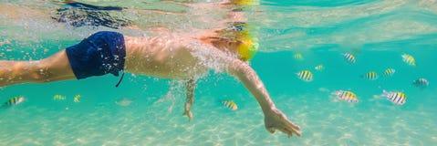 水下的自然课,潜航在清楚的蓝色海横幅,长的格式的男孩 免版税图库摄影