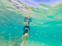 水下的自然课,潜航在清楚的蓝色海的男孩 免版税库存图片