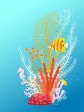水下的花束 免版税库存图片
