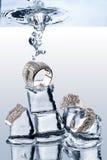 水下的jewelery 免版税库存照片