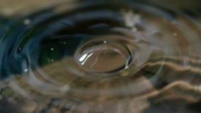 水下落小滴的特写镜头宏指令 图库摄影