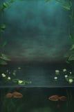水下 免版税库存照片