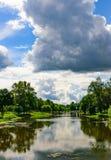 水体在公园是长得太大的泥 免版税库存照片