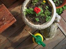 水分配器和一个罐有植物的 库存照片