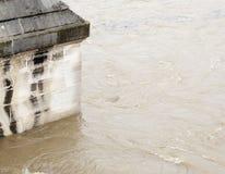 水印在塞纳河 库存图片