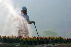 水厂 免版税图库摄影