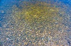 水向河的底部扔石头 库存照片