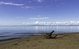 水和天空在Khanka的一种颜色合并 免版税库存图片