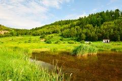水和森林 免版税库存照片