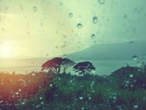 水和雨在雨水玻璃、滴在山的和森林背景滴下 免版税图库摄影
