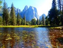 水在优胜美地国家公园 库存照片